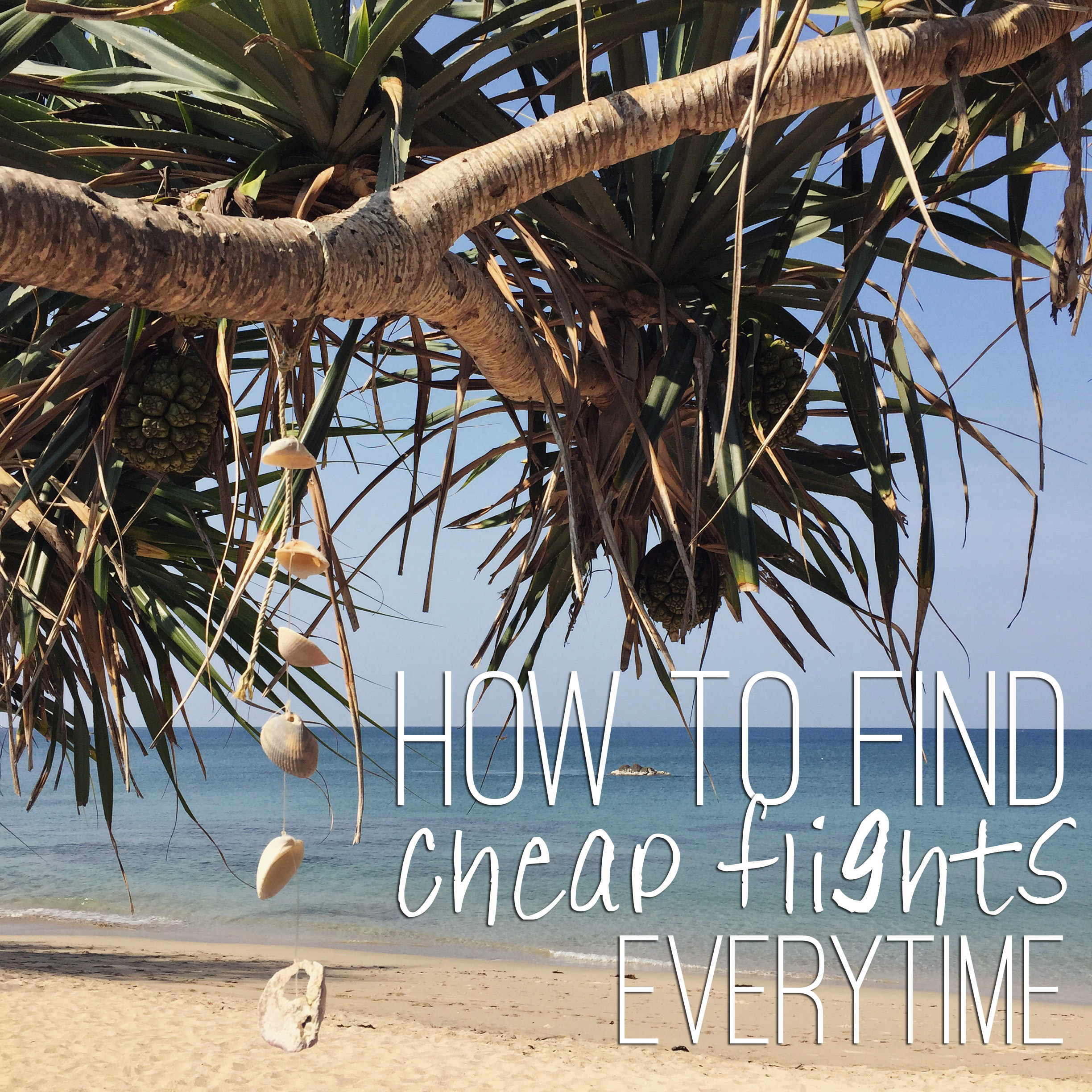 How to Find the Cheapest Flights Everytime
