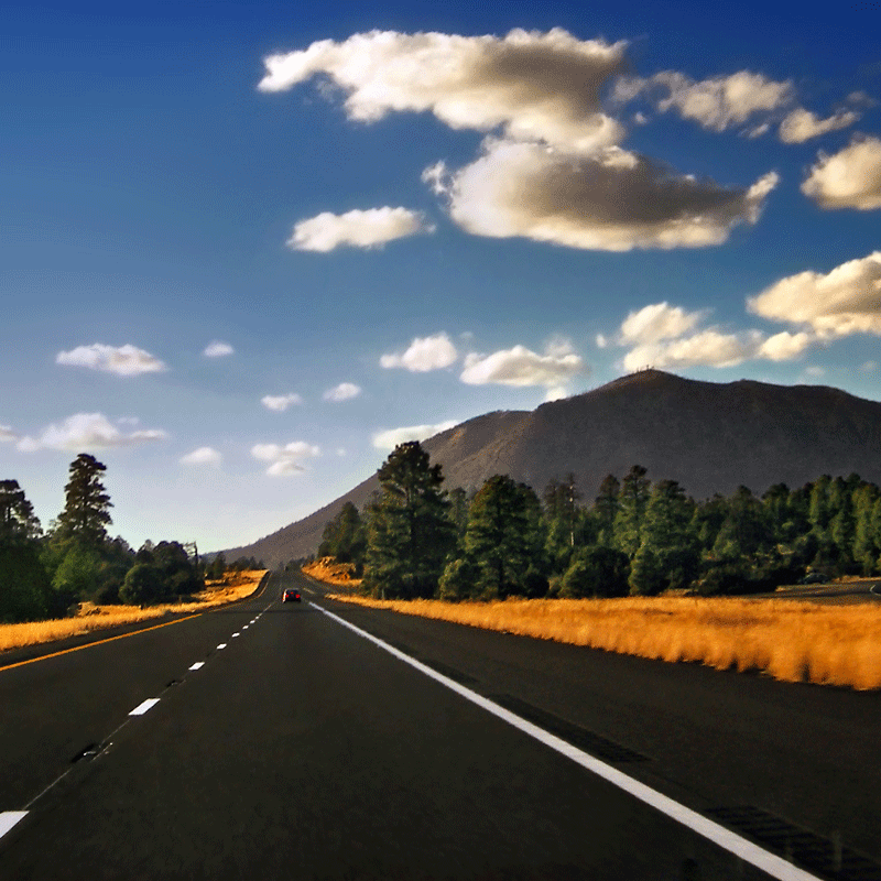 16 Summer Roadtrips around the U.S.A.